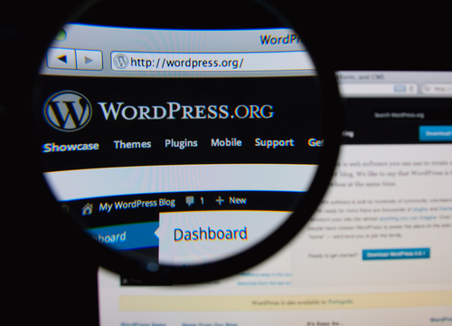 The pitfalls of WordPress auto-updates